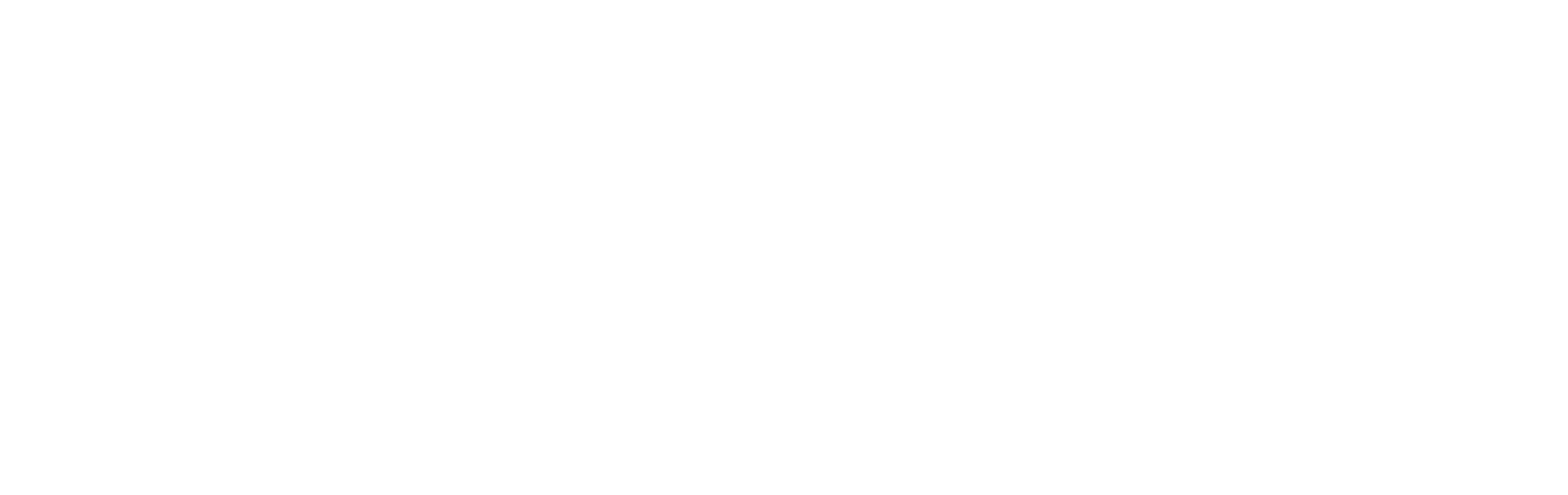 Chubb logo white-3